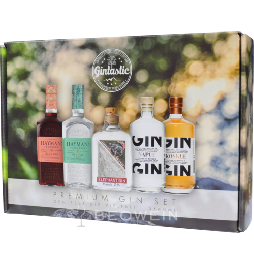 Gintastic Gin Tasting Selection 5 x 0,04 l Miniaturen